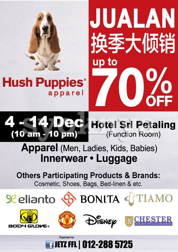 puppies for sale flyer